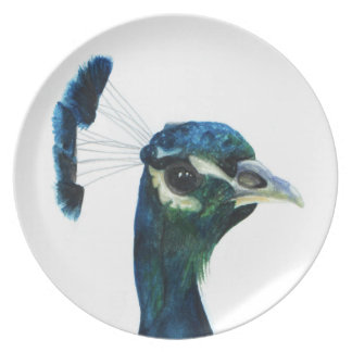Fine Feathers Plate