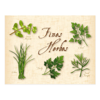Fines Herbs Recipe, Parsley, Chives, Tarragon, Postcard