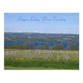 Finger Lakes Wine Country Postcard