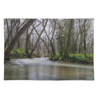 Finley Tranquility In Spring Time Placemat