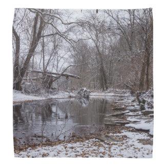 Finley Winter Snow Bandana