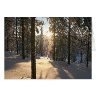 Finnisch Forest Card