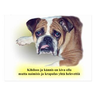 Finnish hangover bulldog postcard