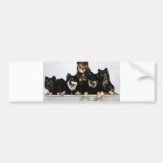 finnish lapphund group bumper sticker