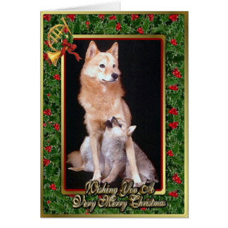 Finnish Spitz Dog Blank Christmas Card