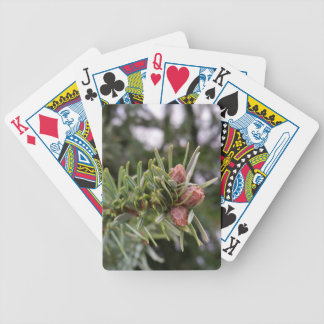 Fir buds bicycle playing cards