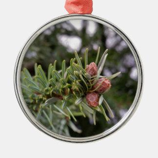 Fir buds metal ornament