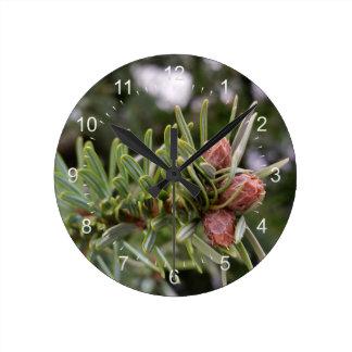 Fir buds round clock