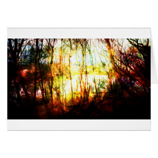Fire Alders Greeting Card