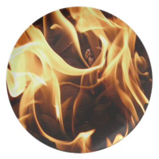 Fire and Flames Plate