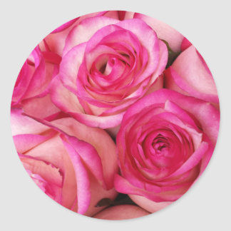 Fire and Ice Roses Round Sticker