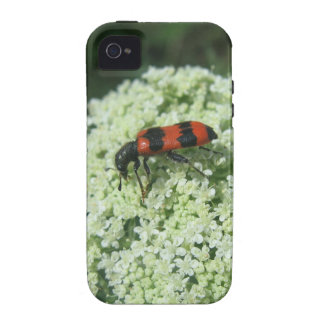 Fire Bug iPhone 4/4S Cover