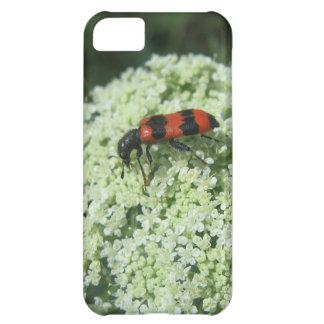 Fire Bug iPhone 5C Case
