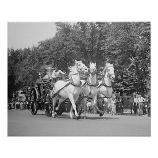 Fire Department Horses, 1925. Vintage Photo Poster