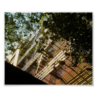 Fire Escapes in Shadow and Sun Poster