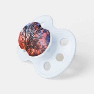 Fire & Ice Pacifiers