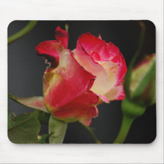 Fire Ice Rose Mousepad