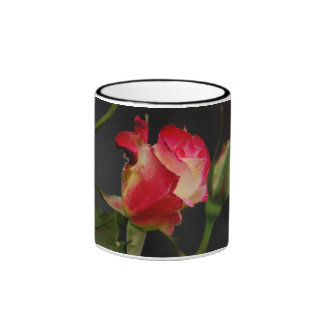 Fire & Ice Rose Mug