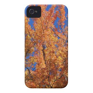 Fire Orange Tree Case-Mate iPhone 4 Cases