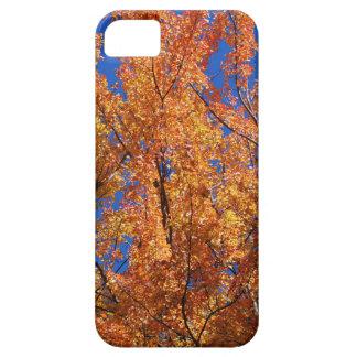 Fire Orange Tree iPhone 5 Case