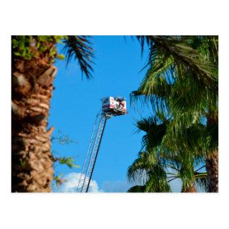 fire truck ladder against sky framed palm trees postcard