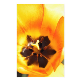 Fire Tulip Stationery