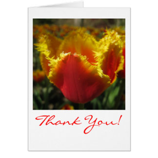Fire Tulip Thank You Card