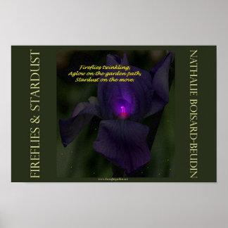 """Fireflies & Stardust"" Portfolio Poster (16.5 x 11"