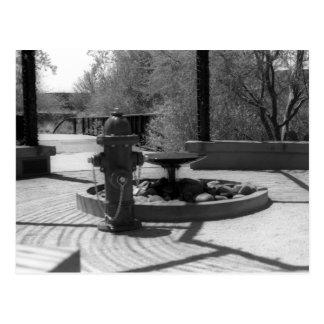 Firehydrant VS Water Fountain Postcard