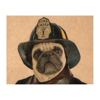 Fireman pug dog cork fabric