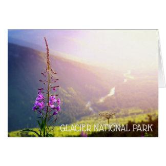 Fireweed at Glacier National Park Card