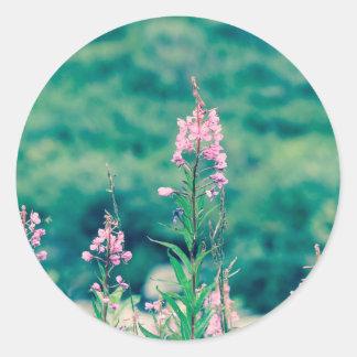 fireweed crossprocess classic round sticker