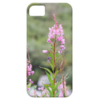 Fireweed iPhone 5 Covers