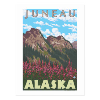 Fireweed & Mountains - Juneau, Alaska Postcard