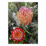 Firewood and Scarlet Banksia Greeting Cards