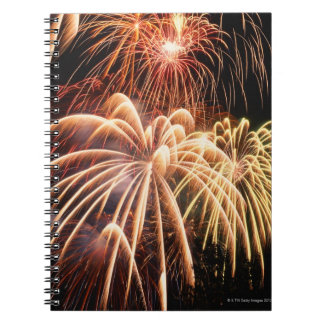 Fireworks 2 notebook