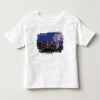 Fireworks Over The City Toddler T-Shirt