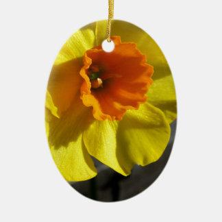 first daffodil ceramic oval decoration
