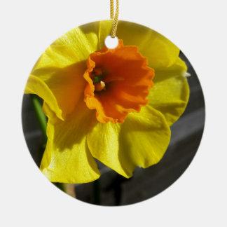 first daffodil round ceramic decoration