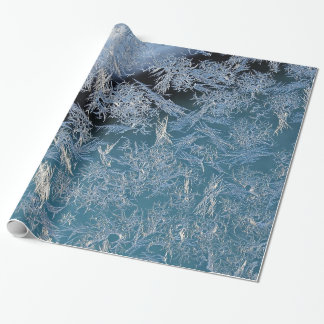 First Hard Frost Nature Abtract Photographic Art Wrapping Paper
