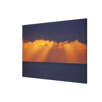 First Light over Tasman Sea, Australia Gallery Wrapped Canvas