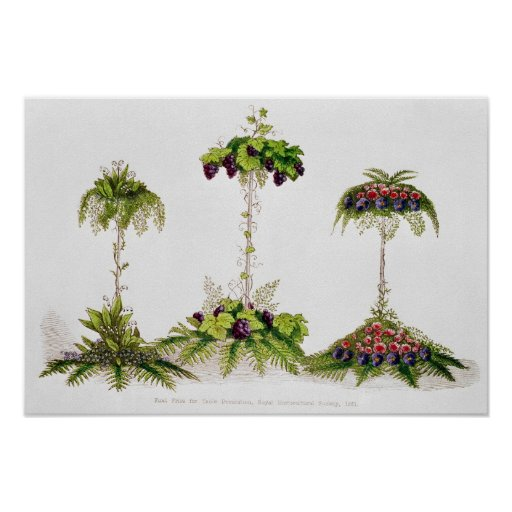 First Prize For Table Decoration Poster Zazzle