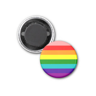 First Rainbow Gay Pride Flag Magnet