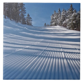 First ski tracks tile