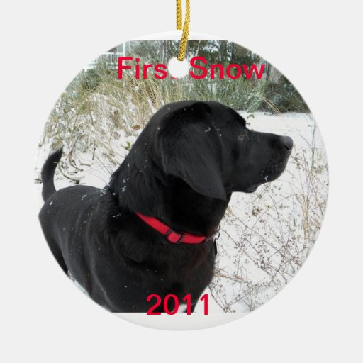 First Snow 2011 Christmas Ornament