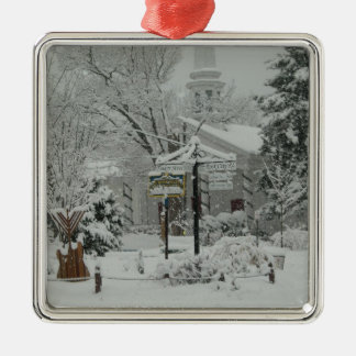 First Snow Fall Town Square Woodstock,NY Silver-Colored Square Decoration