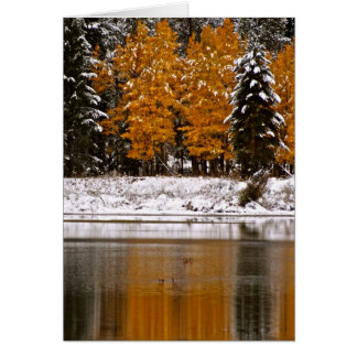FIRST SNOW OVER LAST FALL COLORS CARD
