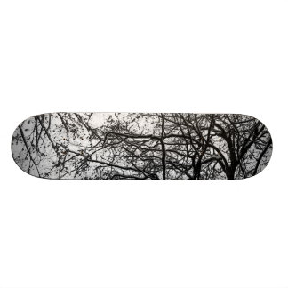 first snow skate board deck
