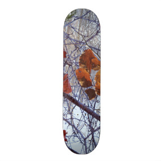 First Snow Winter Camouflage Style Skate Board Deck