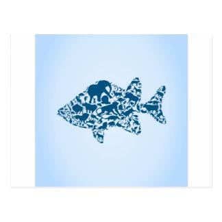 Fish an animal postcard